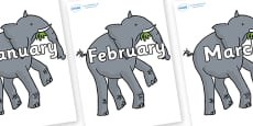 Months of the Year on Trunky The Elephant to Support Teaching on The Enormous Crocodile