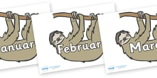 Months of the Year on Sloths