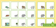 Editable Drawer-Peg-Name-Labels to Support Teaching on Elmer