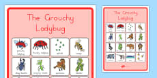 The Grouchy Ladybird Vocabulary Poster