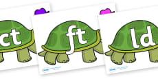 Final Letter Blends on Tortoise