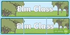 * NEW * Elm Tree Themed Classroom Display Banner