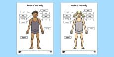 Parts of the Body Senses Labelling Activity Sheet