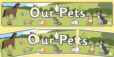 Our Pets Display Banner