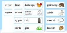 A Little Bit of Winter Geimhreadh Vocabulary Gaeilge