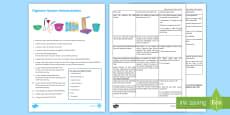 Digestive System Model Investigation Instruction Sheet Print-Out