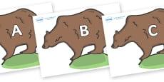 A-Z Alphabet on Bears