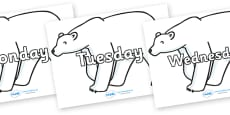 Days of the Week on Polar Bears