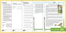 Harry Ferguson and Sir James Martin Differentiated Reading Comprehension Activity