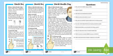 KS1 World Braille Day  Differentiated Reading Comprehension Activity