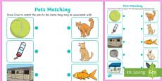 Pets Matching Activity