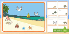 * NEW * Beach Habitat Scene and Question Cards