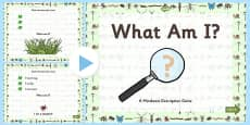 Minibeasts 'What Am I?' Interactive PowerPoint Game