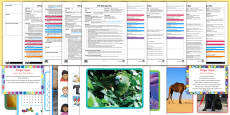 * NEW * EYFS Patterns-Themed Bumper Planning Pack