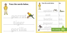 Trace the Words Activity Sheets to Support Teaching on The Great Pet Sale