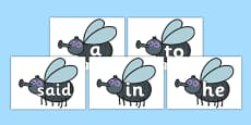 100 High Frequency Words on Flies