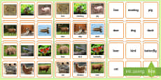 * NEW * Animals Photo Matching Cards