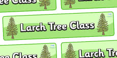 Larch Tree Themed Classroom Display Banner