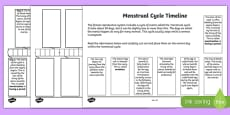 Sex and Relationships Education: Menstruation Timeline Activity Sheet Pack