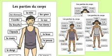 Parts of the Body A4 French