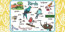 Bird Word Mat