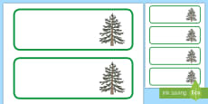 Monkey Puzzle Tree Themed Editable Drawer-Peg-Name Labels (Colourful)