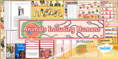 Science: Animals Including Humans Year 5 Unit Additional Resources