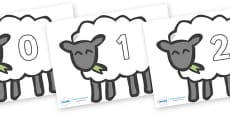 Numbers 0-31 on Sheep