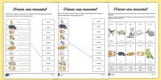 Tienes Mascotas Activity Sheet Spanish