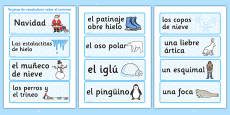 Winter Topic Word Cards Spanish