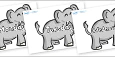 Days of the Week on Elephants