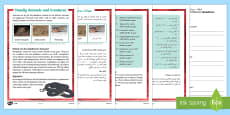 Deadly Animals and Creatures Differentiated Reading Comprehension Activity Arabic/English