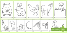 Pets Colouring Sheets