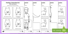 Three Key Word Reading Comprehension Activity Sheets