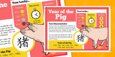 Chinese New Year of the Pig Display Poster
