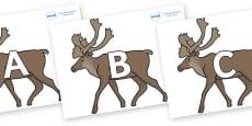 A-Z Alphabet on Caribous