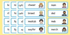 My Family Word Cards Cymraeg