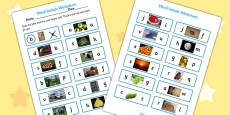 Initial Sounds Photo Activity Sheet