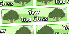 Yew Tree Themed Classroom Display Banner