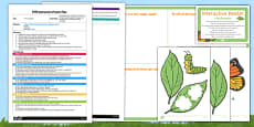 A Tiny Caterpillar EYFS Interactive Poster Plan and Resource Pack
