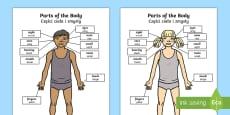 Parts of the Body Senses Labelling Activity Sheet English/Polish