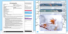 Exploring Ice EYFS Adult Input Plan and Resource Pack