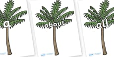 100 High Frequency Words on Palm Trees