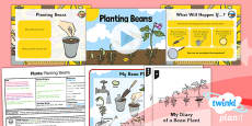 Science: Plants: Planting Beans Year 1 Lesson Pack 1