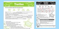 Australian Animals Years 3-6 Turtles Differentiated Cloze Passage Activity Sheet