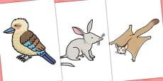Australian Animals Editable