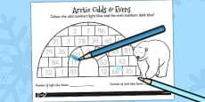Arctic Odds and Evens Colouring Activity