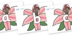Phoneme Set on Lilies