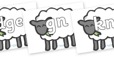 Silent Letters on Sheep