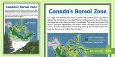 Canada's Boreal Zone Map